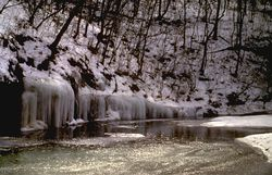 Clifty Creek a beautiful sight in winter!